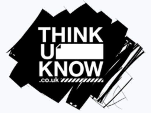 Thinkuknow - online safety at home