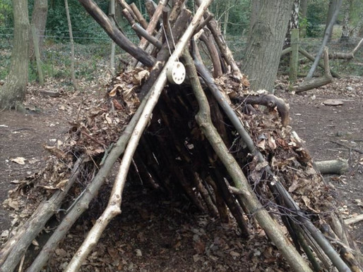 Forest School at home ideas