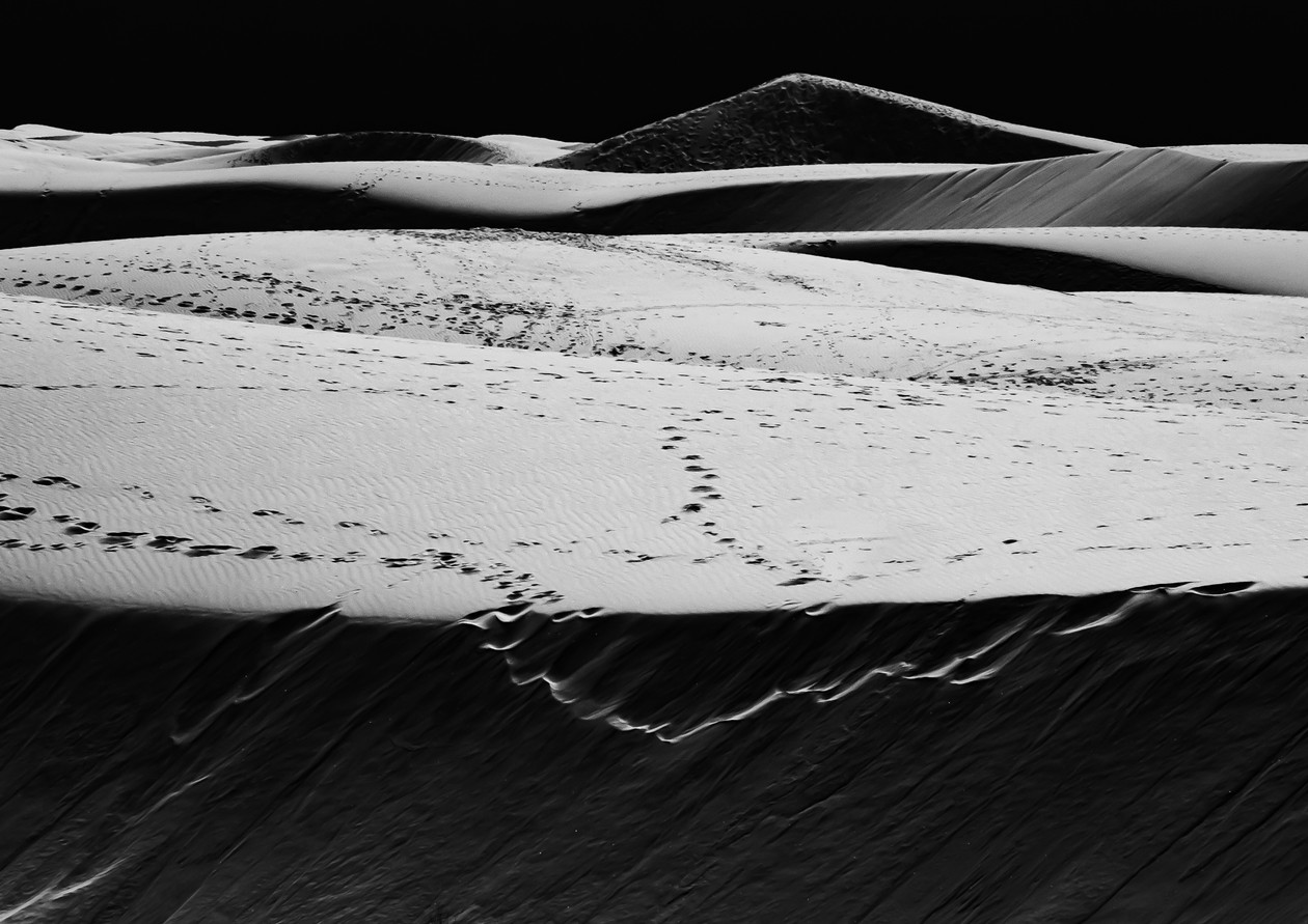 WS-Moon Dune.jpg