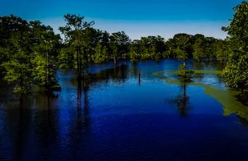 Monroe-Black Bayou