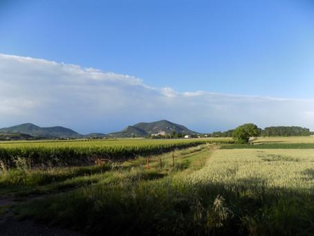 Mo. 23.05.16 / Rosolina Mare - Baone / 66 km, 62 Hm