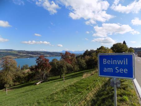 So. 04.10.15 / Obererendingen - Böju / 38 km, 303 hm