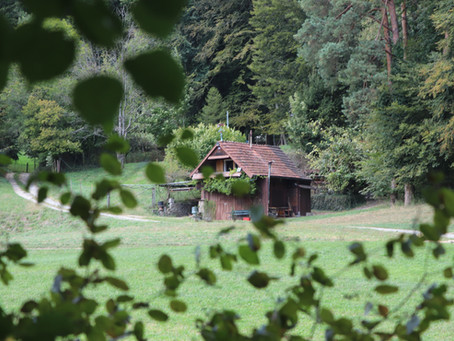 So. 23.09.18 / Winterthur - Böju / 82 km, 871 Hm