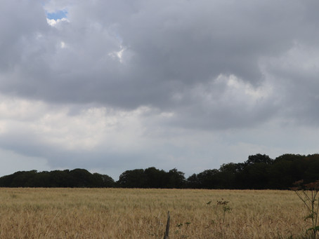 Do. 01.08.19 / Whitstable - Dover / 45 km, 575 Hm