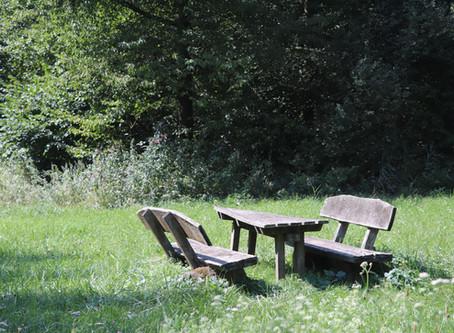 So. 25.08.19 / Rülzheim - Rheinmünster / 68 km, 65 Hm