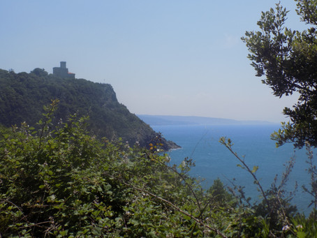 Do. 04.06.15 / Marina di Bibbona - Torre del Lago / 89 km, 348 Hm