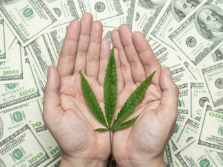 Cannabis Funding — Not So Green Pastures