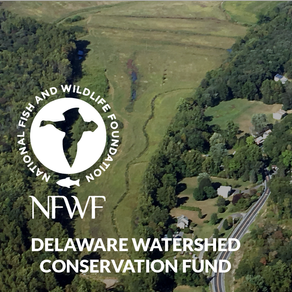 Riparian and Habitat Restoration at Pequest Wildlife Management Area (NJ)