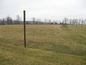 Spring Run Farm