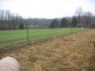 Foxcross Farm