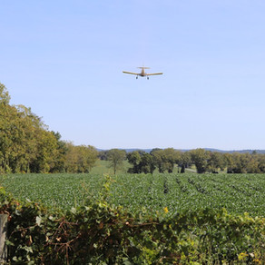 Aerial Seeding Cover Crops- Building Healthy and Resilient Soils
