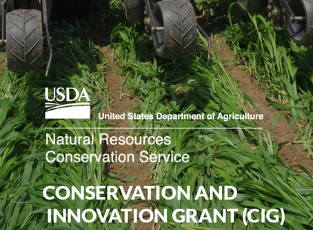 Innovative Strategies for Cover Crop Termination:
