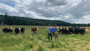 River Valley Farm, a Local Grass-Fed Beef Operation, is Certified as a River-Friendly Farm