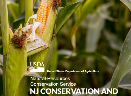 Use of Short Season Variety Corn and Soybeans to Facilitate the Adoption of Multi-species Cover Crop