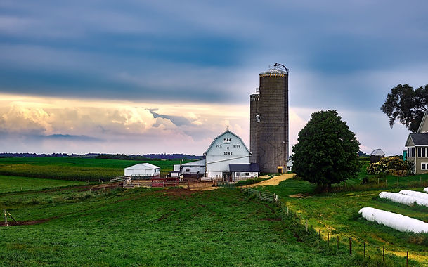 agriculture-barn-beautiful-248837.jpg