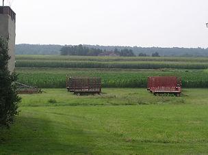 Terraceland