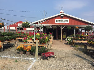 Stony Hill Farm Market