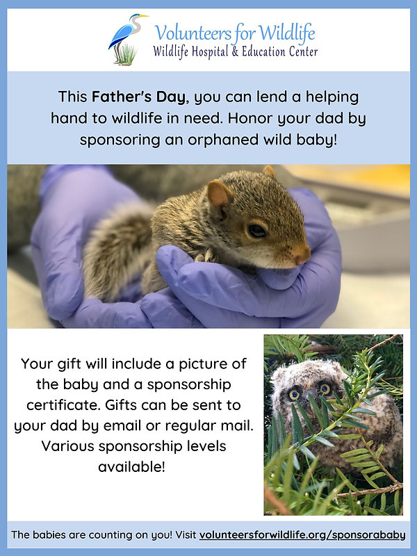 Mother'sFather's Day Sponsorships-3.jpg