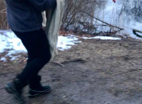 Bayside Swan Saved