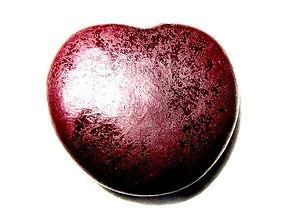 entada-gigas-seed-500x500.jpg