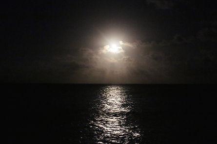8moonlight.jpg