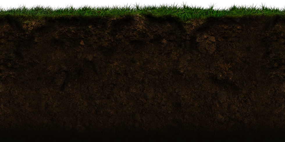 grass-back.png