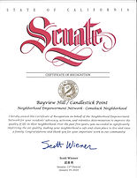 Senate Cert of Honor.jpg