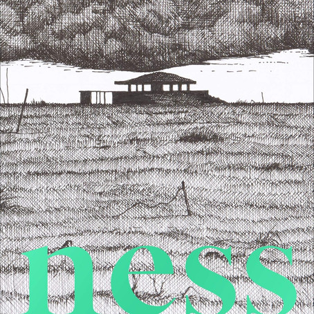 'Ness' by Robert Macfarlane and Stanley Donwood