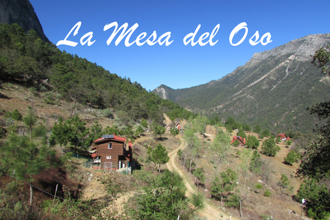 "One year after: Return to ""La Mesa del Oso"""