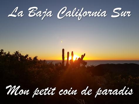 La Baja California Sur : mon petit coin de paradis au Mexique.