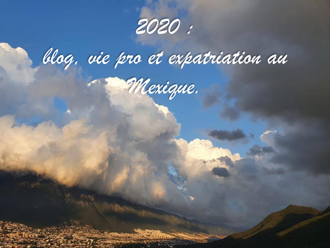 2020 : blog, vie pro et expatriation au Mexique.