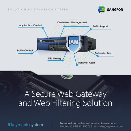 A Secure Web Gateway and Web Filtering Solution
