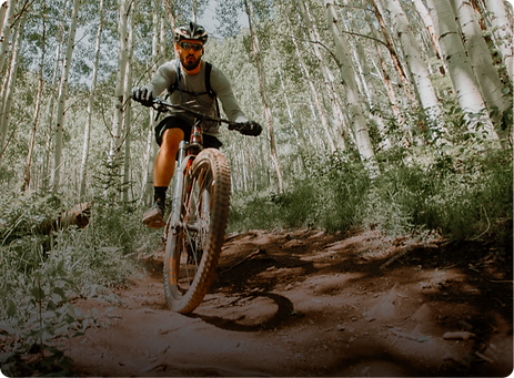 Man riding bicycle in forrest.png