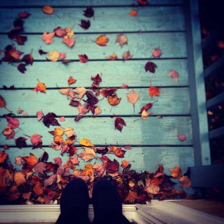 Autumnal Tune-Up: Falling into Balance