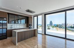 Cybarco Penthouse-1.jpg