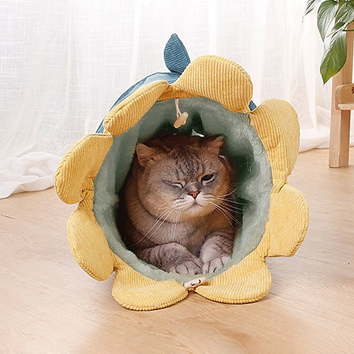 Interactive Cat Tunnel