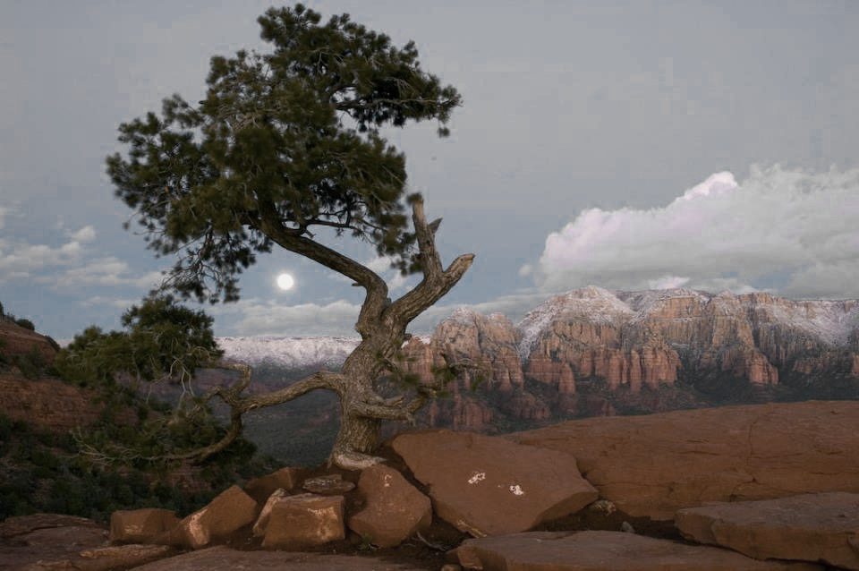 Full Moon in Sedona, by John Rodger