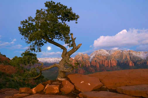 Full moon over Sedona's magical Red Rock mountains. Photo by John Rodger.