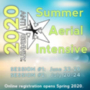 AG Summer intensive 2020 AD