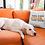Thumbnail: You Can Adopt This Dog Pillow