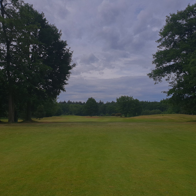 Baanrapport: Golfpark de Haenen