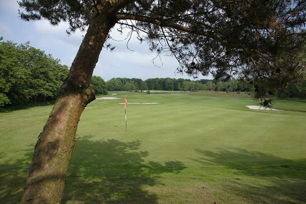 BurgGolf Golfclub Sint Nyk