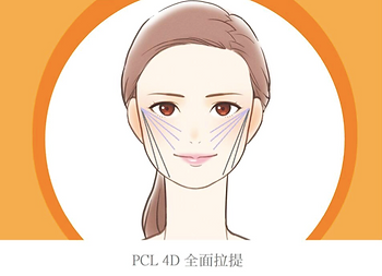 PCL 4D