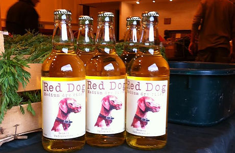 red dog cider.jpg
