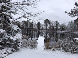 Winter on the lanai