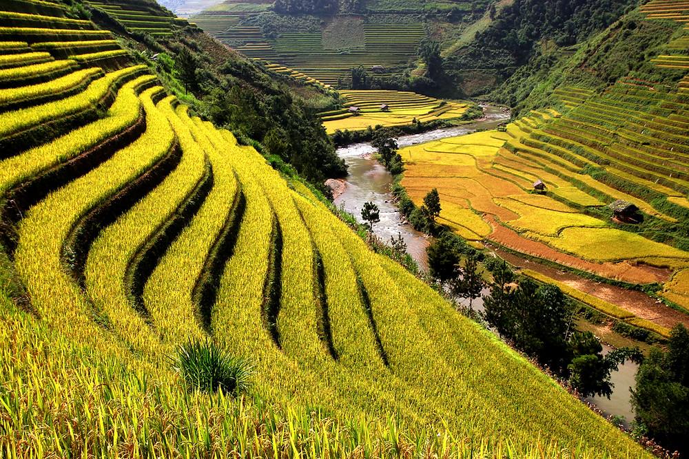 大地生產的資源足夠滿足所有生物的需求,但不足以滿足所有人的貪婪。