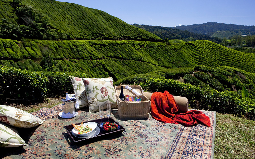 A picnic in the hills at the Cameron Highlands Resort in Malayasia.