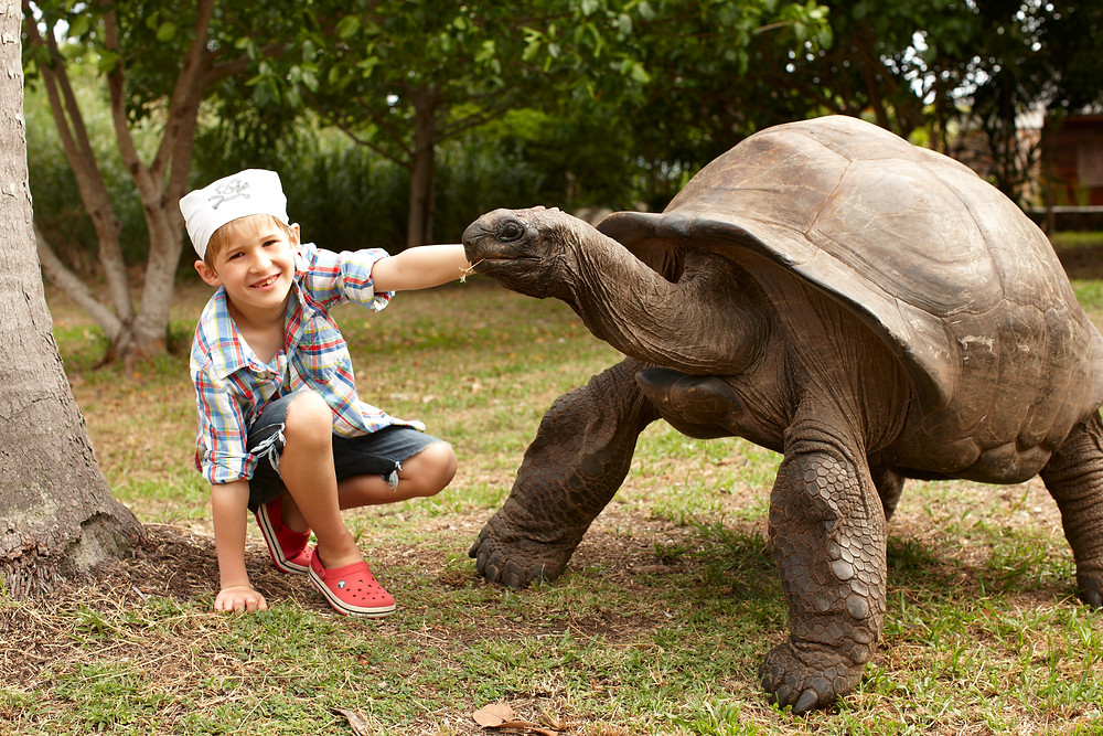 Child with Giant Tortoise at Fregate Island Private