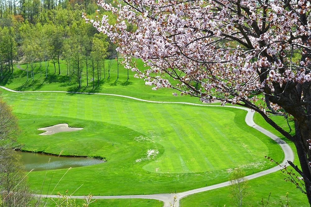 The Golf Course at the Hilton Niseko Village