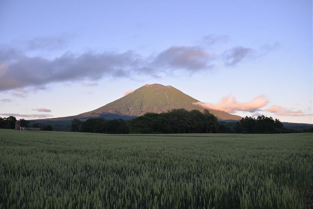 Mount Yotei in Niseko Village, Japa at Higashiyama Niseko Village, a Ritz-Carlton Reserve.